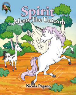 Spirit Meets The Unicorn Ebook