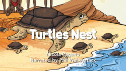 Turtles Nest Movie