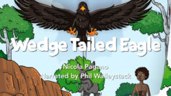 Wedge Tailed Eagle Movie