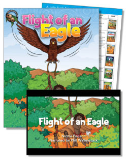 Flight Of An Eagle Education Pack – One Teacher License